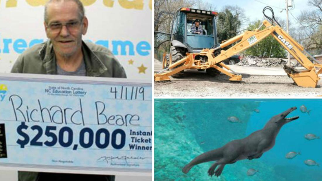 A Lotto Winner's Dreaming Trip, A Strange Whale And A Selfless Shopping Spree