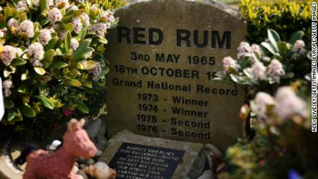 Tiger Roll emulated Red Rum at the Grand National.