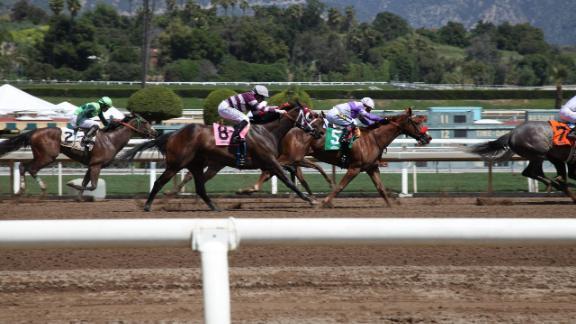 Horses Keep Dying At Santa Anita Racetrack Here S What We