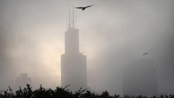 Chicago was the most dangerous city in the USA for migrating birds.
