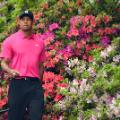 Masters photos A-Z Tiger Woods Azaleas