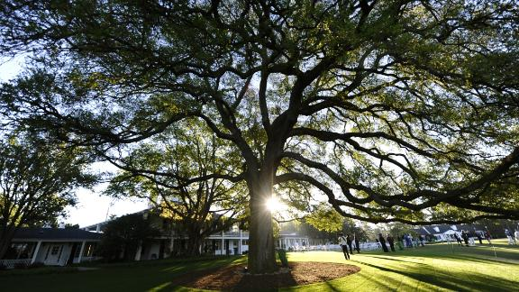 """The famous old oak tree on the course side of the clubhouse is an iconic landmark and the traditional meeting place for the game's movers and shakers and media types with the correct credential. A familiar refrain of Masters week is: """"Meet you under the tree."""""""