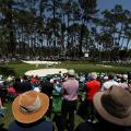 MAsters photos A-z patrons Augusta