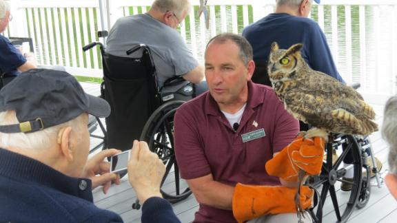 Vallieres shows an owl to a veteran during a demonstration at the New Hampshire Veterans Home.