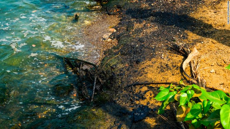 Oil sludge stains the entire coastline of the Maracaibo lake.