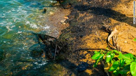 Oil sludge spots the entire coast of the Maracaibo lake.
