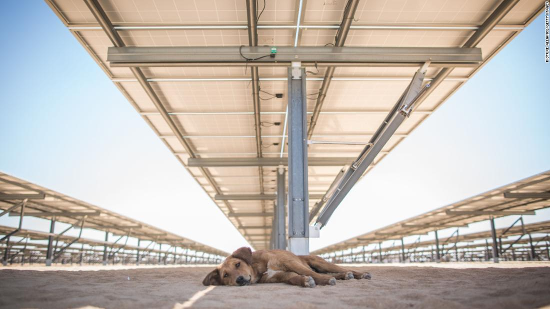 "Inaugurated in March 2018, the Infinity 50 Solar Park in southern Egypt is the first of a reported 32 stations that will comprise the Benban Solar Park. Benban's total capacity once completed has multiple projections, from <a href=""https://www.ebrd.com/news/2019/first-ebrd-funded-egyptian-solar-plant-begins-generation-.html"" target=""_blank"">1,465 </a>to <a href=""https://www.weforum.org/agenda/2019/01/egypt-is-building-one-of-the-worlds-largest-solar-parks/"" target=""_blank"">1,650 </a>to <a href=""https://www.acciona-energia.com/pressroom/news/2019/february/acciona-swicorp-complete-assembly-three-photovoltaic-plants-ownership-egypt/"" target=""_blank"">1,800 megawatts</a>.<br />"