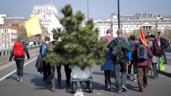 Environmental protesters from the Extinction Rebellion group arrive with a tree to stage a demonstration on Waterloo Bridge. Protesters placed plants along the length of the bridge on April 15.
