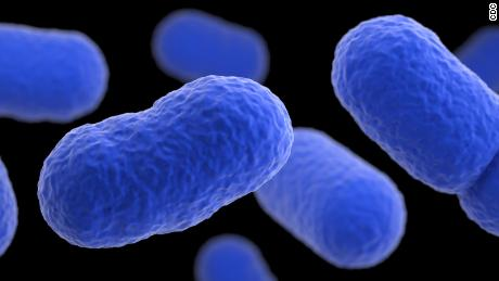 What is listeria? Everything you need to know