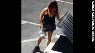 Authorities are looking for the woman they say dumped a plastic bag full of puppies.