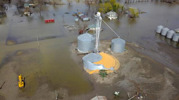 Grain lies spoiling after its silo was broken in the flooding.