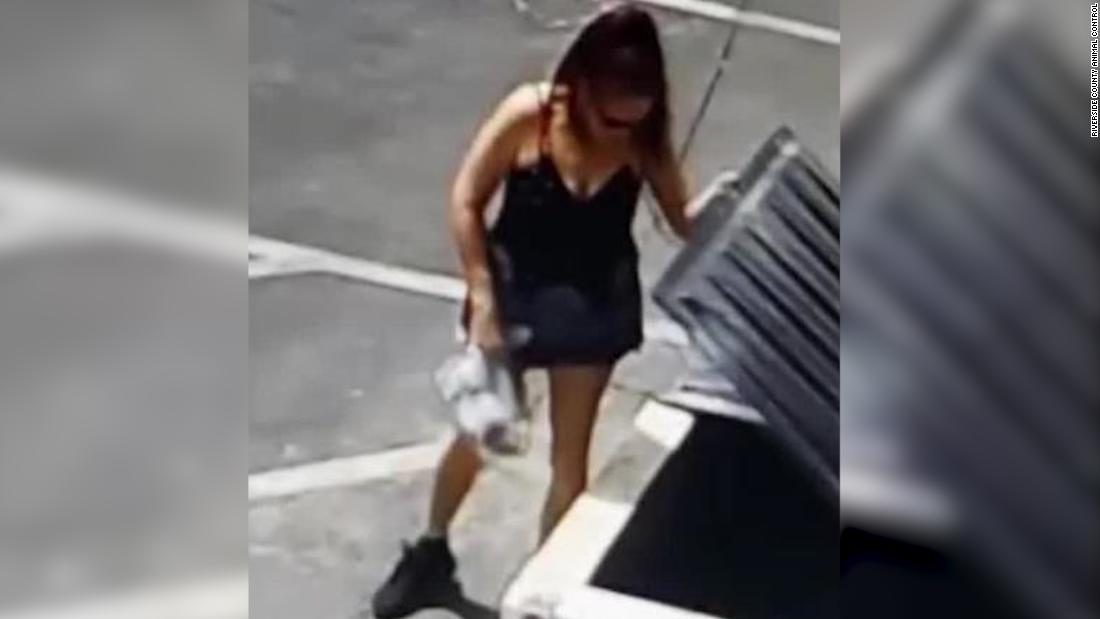 Woman arrested for allegedly tossing bag of puppies near trash bin