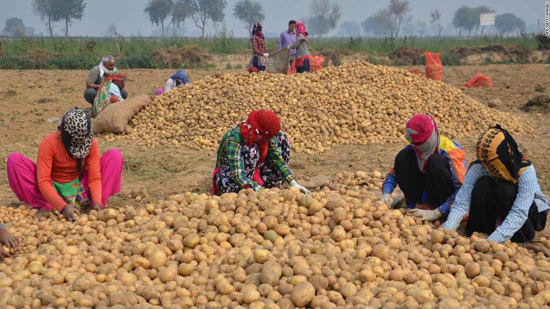 PepsiCo is suing farmers in India for growing the potatoes it uses in Lays chips - CNN