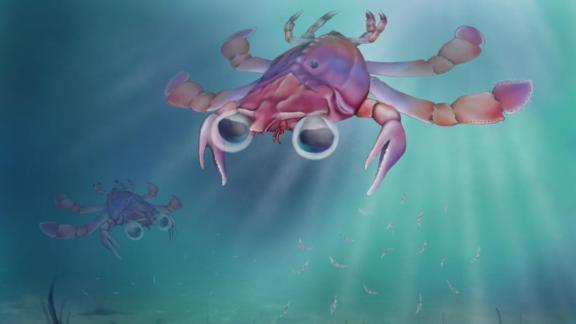 An artist's rendering of Callichimaera perplexa.
