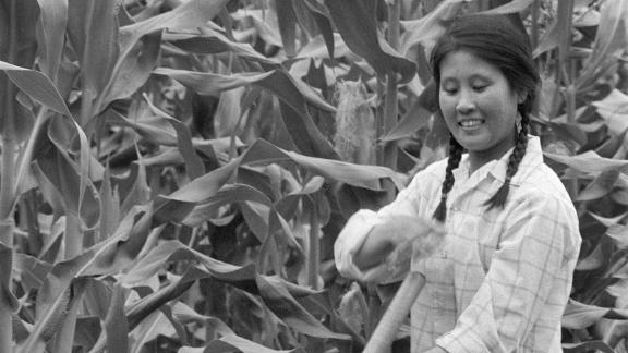 "A young intellectual woman working in June 1974 a field in a state farm in Harbin as she takes part in a ""political re-education"" program."