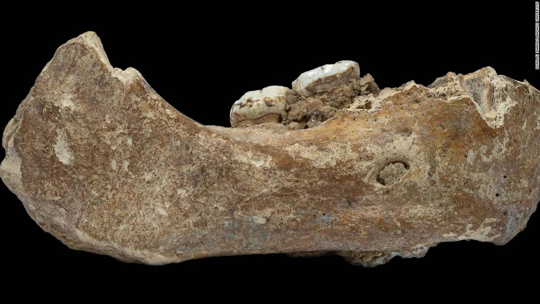 A 160,000-year-old Denisovan jawbone found in a cave on the Tibetan Plateau is the first evidence of the presence of this ancient human group outside the Denisova Cave in Siberia.