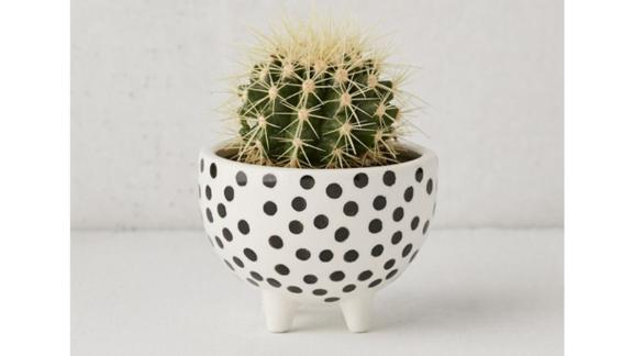 Lekha Footed Mini Planter ($12; urbanoutfitters.com)