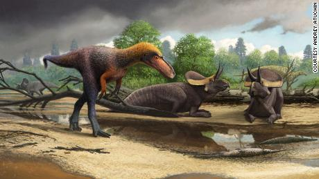 Fossils of 3-foot-tall Tyrannosaurus rex relatives are evolutionary stepping stone