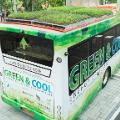 bus green roof 5