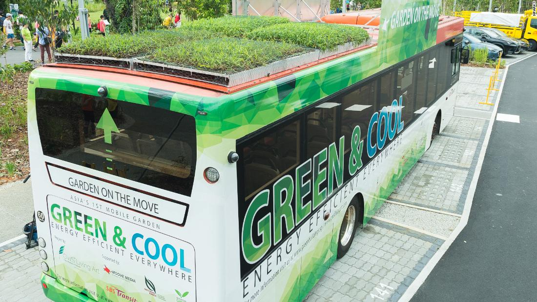 The plants are succulents and grasses that have been specially selected to withstand warm conditions on top of the buses.