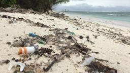 414 million pieces of plastic found on remote Australian islands: Study