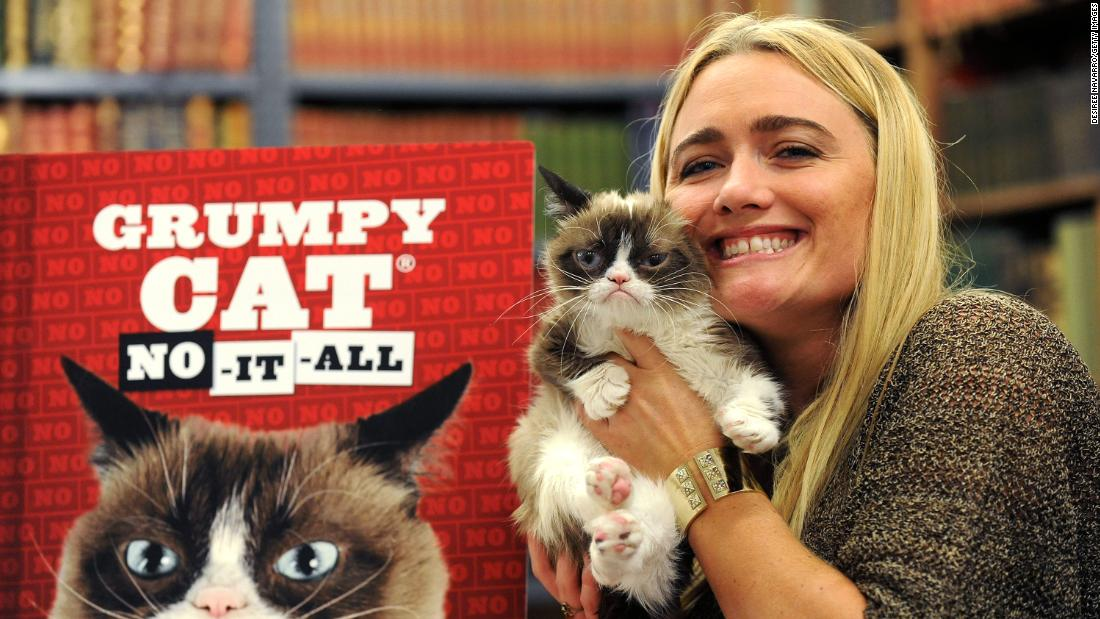 Grumpy Cat Found Quick Success Other Celebrity Pets Might
