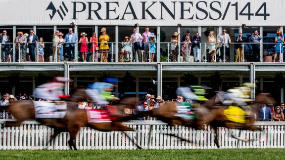 The field of contenders passes The Stronach Group corporate chalet in the Gallorette Stakes on Preakness Day at Pimlico Race Course in Baltimore on Saturday.