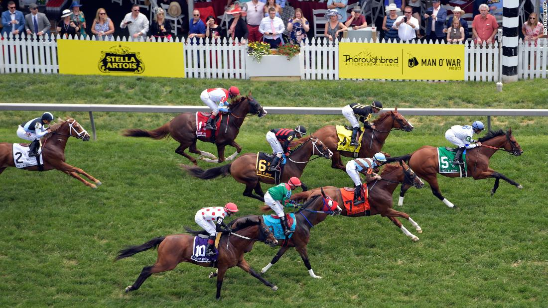 Horses move on the turf in the fifth race ahead of the 144th Preakness Stakes horse race at Pimlico Race Course on Saturday.
