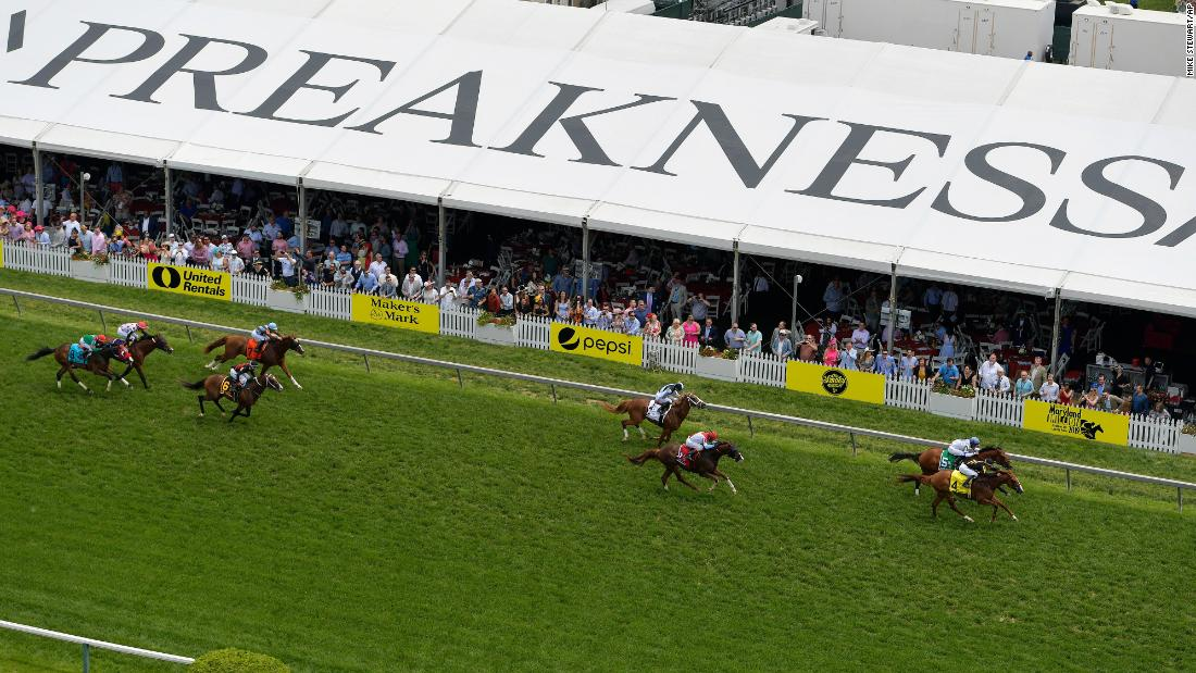 Horses move on the turf in the fifth race ahead of the 144th Preakness Stakes horse race at Pimlico Race Course.