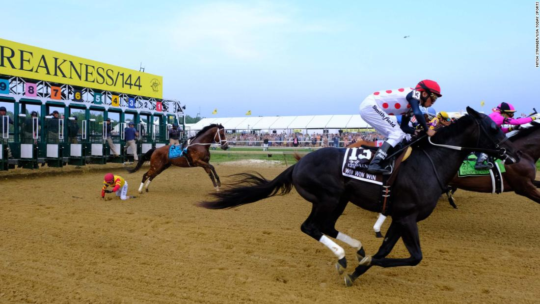 John Velazquez falls off Bodexpress (9) at the start of the 144th running of the Preakness Stakes at Pimlico Race Course on Saturday, May 18. Bodexpress ran the rest of the race without his jockey but was officially listed as a Did Not Finish.