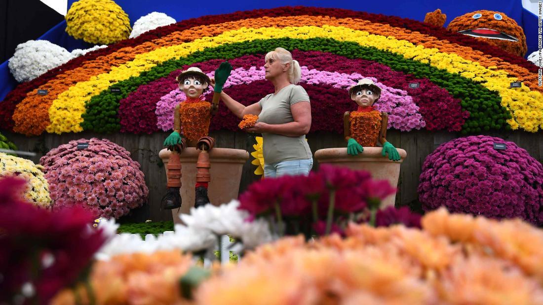 Chelsea flower show saturday