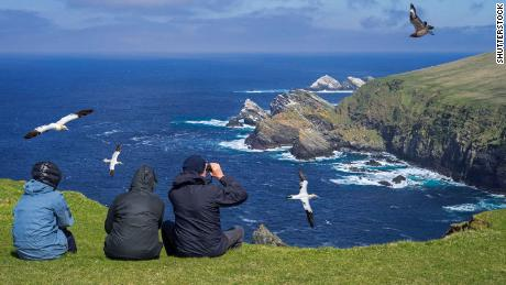 Shetland Isles, UK - May 2018. Birdwatchers watching gannets and great skua soaring past sea cliffs and stacks at seabird colony at Hermaness, Unst, Shetland Islands, Scotland, UK