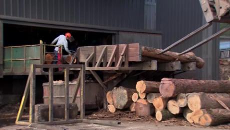 How tariffs are hurting US lumber