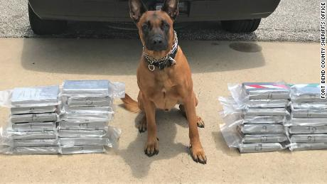 Spyke helped track down a large amount of cocaine during a traffic stop in Texas.
