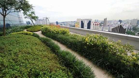 """Singapore has been named the """"greenest city in Asia"""" by Green City Index. This apartment block features a rooftop garden for its residents -- an example of Singapore's efforts to incorporate nature into urban life."""