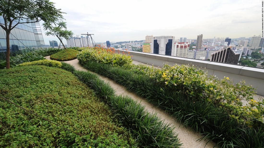 "Singapore was named the ""greenest city in Asia"" in 2018 in the Green City Index. This apartment block features a rooftop garden for its residents -- an example of efforts to incorporate nature into urban life."