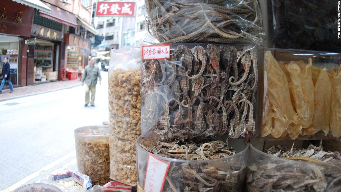 Used as a natural Viagra in Chinese medicine, seahorse numbers are declining