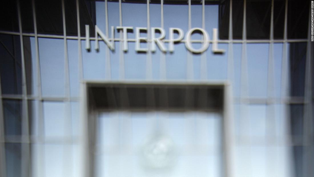 50 children saved as Interpol exposes international pedophile ring