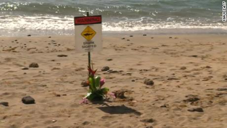 Signs have been posted along the beach warning people to be wary of sharks.