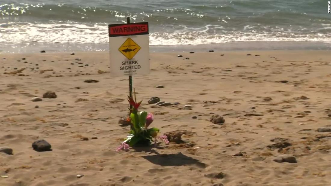 Shark attack kills man swimming off Maui, authorities say