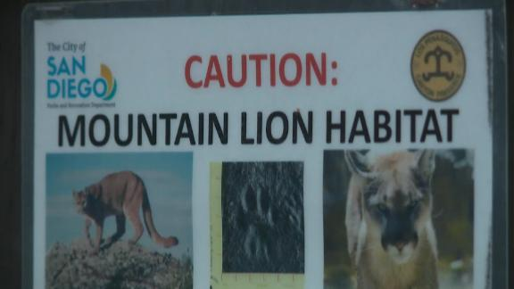 A 4-year-old boy was attacked at a nature preserve by a female mountain lion, who was later euthanized.