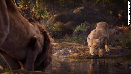 & # 39; The Lion King & # 39; hits familiar notes on Disney classic adaptation