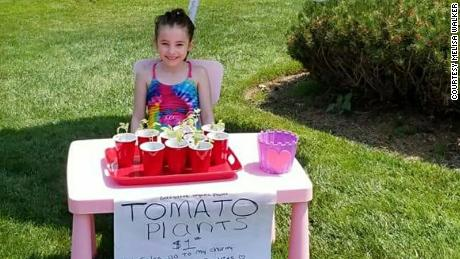 Alex Walker sells tomato plants she grew from seeds to pay for stuffed animals for children in need.