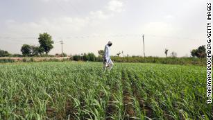 Indian farmers are using the sun to help water their crops
