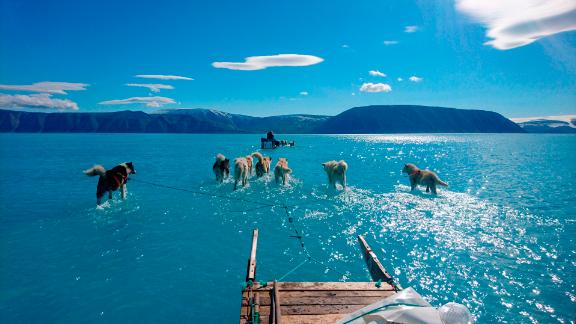 In this photo taken on Thursday, June 13, 2019 sled dogs make their way in northwest Greenland with their paws in melted ice water. Diplomats and climate experts gathered Monday in Germany for U.N.-hosted talks on climate change amid growing public pressure for governments to act faster against global warming. Over the weekend, a picture taken by Danish climate researchers showing sled dogs on the ice in northwest Greenland with their paws in melted ice water was widely shared on social media. Greenland