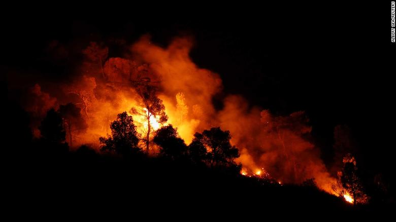 Trees burn during the forest fire west of Tarragona on June 27.