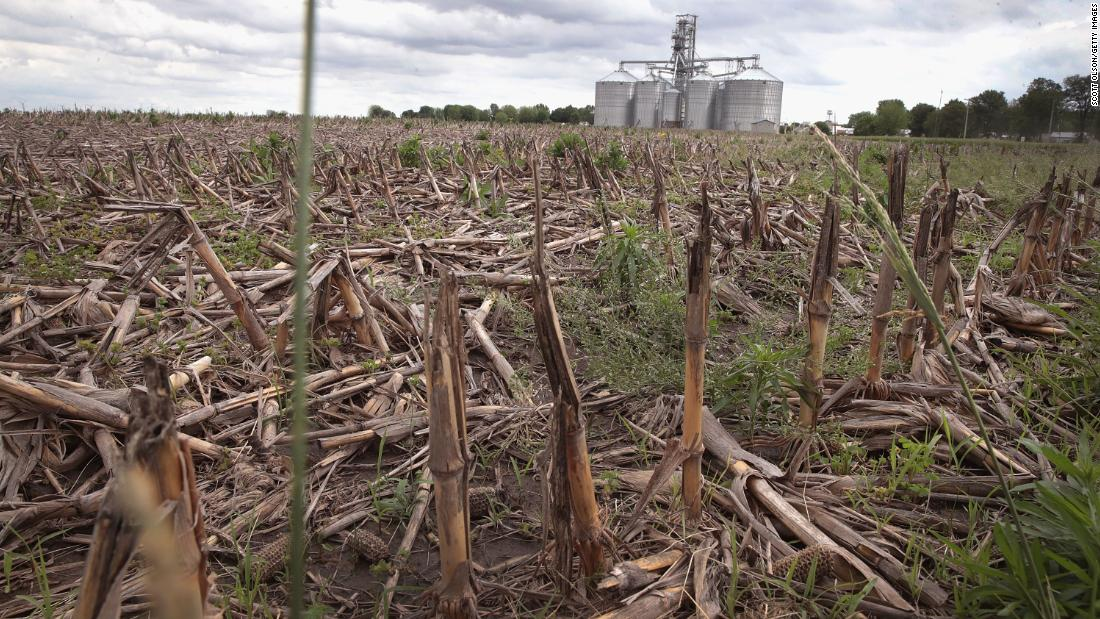 American corn farmers are having their worst year in recent history