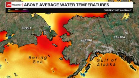 Current sea temperatures around coastal Alaska are pushing 10 degrees above seasonal norms.