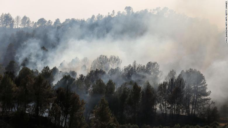 Smoke billows from a forest fire raging near Flix in the northeastern region of Catalonia on June 27, 2019.