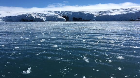 Blocks of ice drift on the water off the coast of Collins glacier on King George Island, Antarctica.